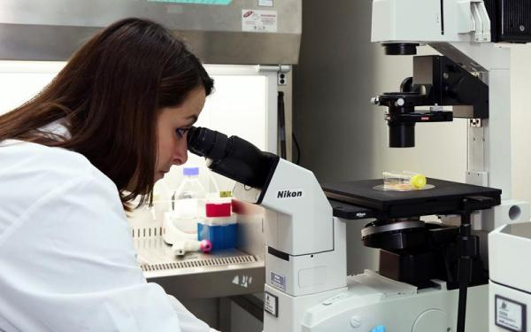 Nanomedicina contro l'Alzheimer: una clip animata per il progetto UE B-SMART